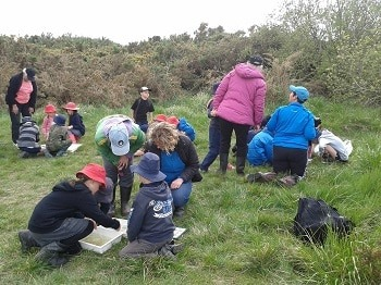 Leeston Primary pupils planting spring trees. Photo by Adrienne Lomax.